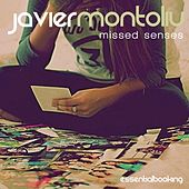 Missed Senses by Javier Montoliu