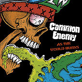 As the World Burns by Common Enemy