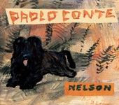 Nelson von Paolo Conte