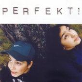 Perfekt! by Perfekt