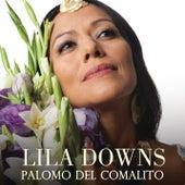 Palomo Del Comalito von Lila Downs