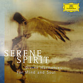 Serene Spirits - Divine Harmonies for Mind and Soul von Various Artists
