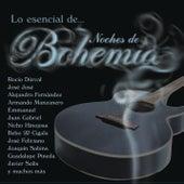 Lo Esencial de Noches de Bohemia von Various Artists