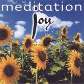 Joy von Various Artists
