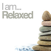 I Am Relaxed von Various Artists