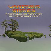 Wondrous Stories: A Complete Introduction To Progressive Rock von Various Artists