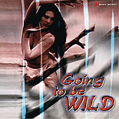 Going To Be Wild by Sonu Nigam