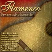 Flamenco - Patrimonio de la Humanidad by Various Artists