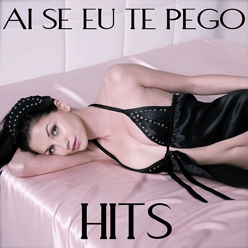 Ai Se Eu Te Pego: Hits 2011 by Various Artists