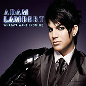 Whataya Want From Me von Adam Lambert