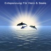 Entspannung Für Herz & Seele - Yoga, SPA , Wellness Musik by Meister der Entspannung und Meditation