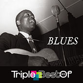 Triple Best Of Blues von Various Artists