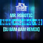 Mr.Robotic (DJ Bam Bam Radio Remix) - Single by Mr. Robotic