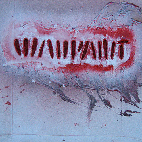 Shadows by Warpaint