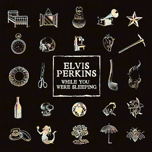 While You Were Sleeping von Elvis Perkins