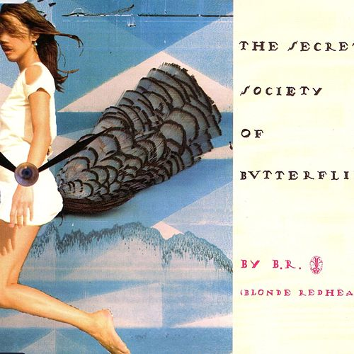 The Secret Society Of Butterflies by Blonde Redhead