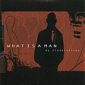 What Is A Man by Tindersticks