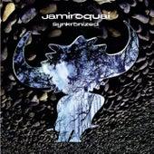 Synkronized von Jamiroquai