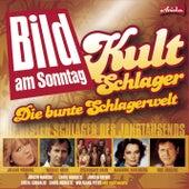 Kult Schlager: Die bunte Schlagerwelt von Various Artists