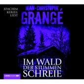 Im Wald Der Stummen Schreie von Jean-Christophe Grangé