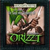 DRIZZT - Die Saga vom Dunkelelf 10 - Das Tal der Dunkelheit by Drizzt