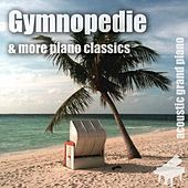 Gymnopedie by Various Artists