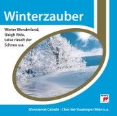 Winterzauber von Various Artists