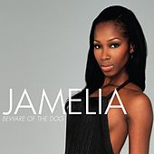 Beware Of The Dog by Jamelia