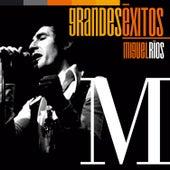 Grandes Éxitos: Miguel Ríos by Miguel Rios