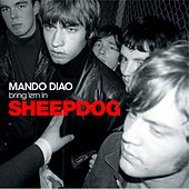 Sheepdog by Mando Diao