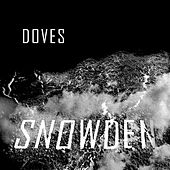 Snowden by Doves