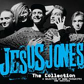 The Collection by Jesus Jones