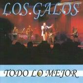 Todo lo mejor by Los Galos