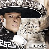 Lluvia by Pedro Fernandez