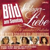 Schlager Liebe: Die zärtlichen Hits zum kuscheln von Various Artists