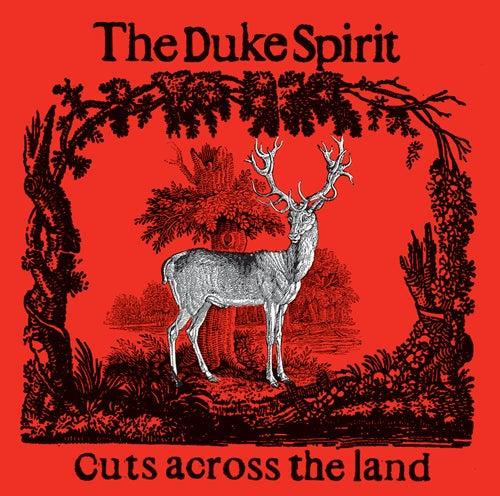 Cuts Across The Land von The Duke Spirit