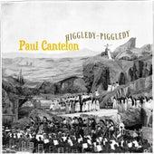 Higgledy-Piggledy by Paul Cantelon
