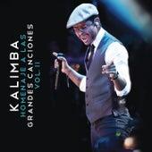 Homenaje a las Grandes Canciones, Vol. II by Kalimba