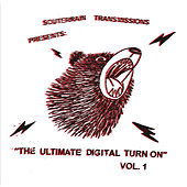 The Ultimate Digital Turn On Vol. 1 von Various Artists