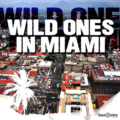 Wild Ones in Miami by Various Artists