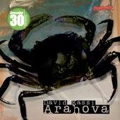 Arahova by David Kassi