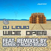 Wide Open by DJ Liquid