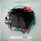 Breaking The Ice LP by Various Artists
