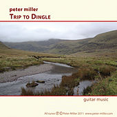 Trip to Dingle by Peter Miller