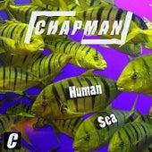 Human Sea by Chapman