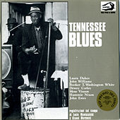 Tennessee Blues No. 1: Registrazioni sul campo di Lucio Maniscalchi e Gianni Marcucci by Various Artists