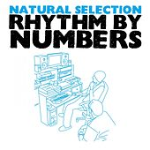 Rhythm By Numbers by Natural Selection