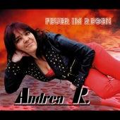 Feuer im Regen by Andrea R.