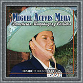 Rancheras, Huapangos Y Corridos by Various Artists