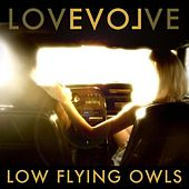 Lovevolve by Low Flying Owls